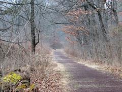todays path