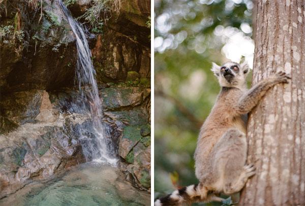 RYALE_Madagascar_Blog2_037