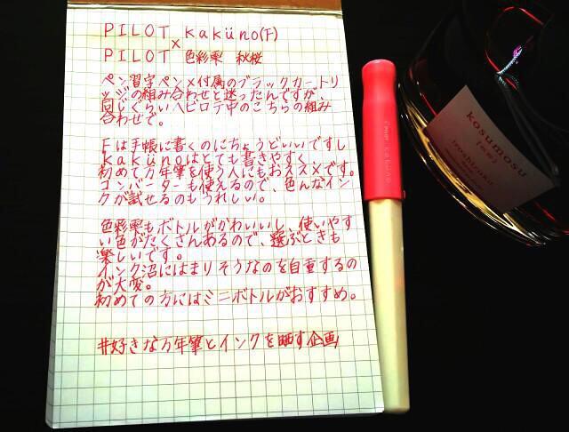 カクノと秋桜2つ目
