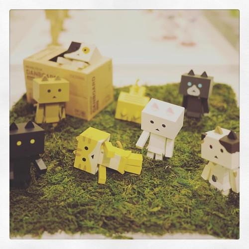 #ダンボー #ニャンボー #DANBOAD #猫 #cat #ねこ #ジオラマ #cute