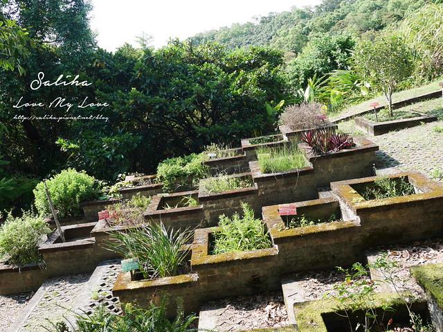 宜蘭一日遊旅遊景點仁山植物園 (9)