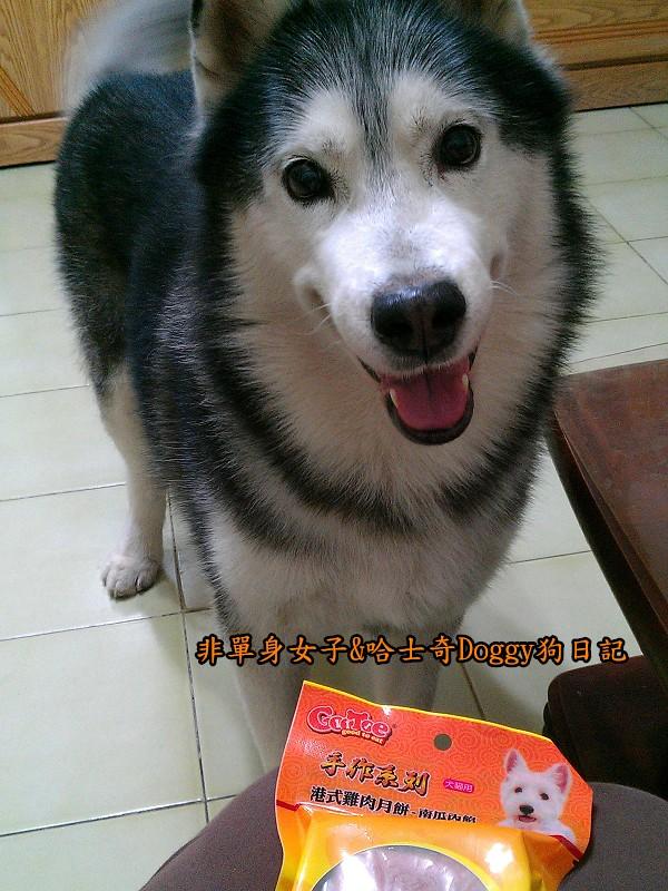 寵物狗月餅01