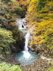 Nishizawa valley 4