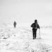 A Winter Walk by seamus_0