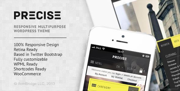 Precise v1.0.1 - Multipurpose Responsive WordPress Theme