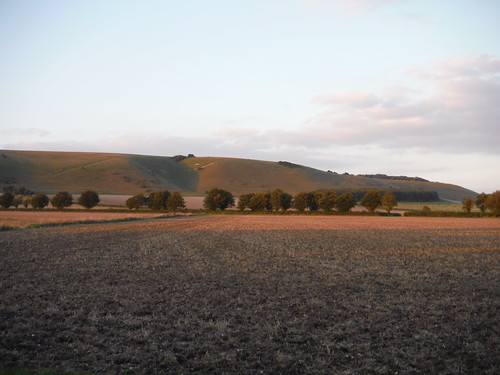 Huish Hill in the evening glow