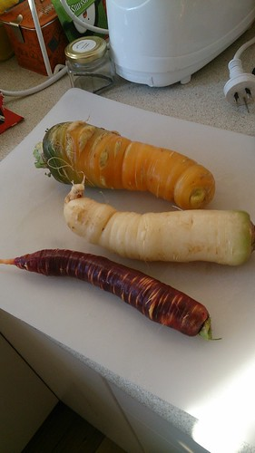 Homegrown carrots.