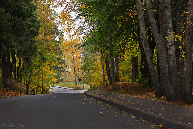 autumn_roads_05
