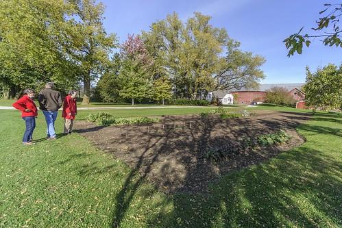 _WCB4120 Fall garden