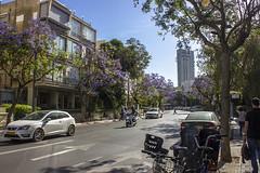 Tel Aviv 002