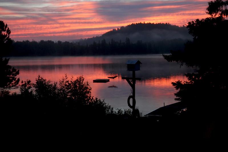 Sunrise Baptiste - heron