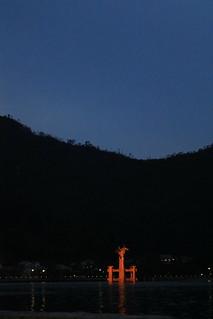 ライトアップされた 厳島神社 大鳥居