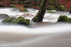 Turbulent rapids / Turbulente Stromschnellen
