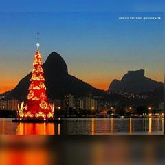 Com esta belíssima imagem da tradicional Árvore de Natal da Lagoa, primoroso registro de Vinicius Frizeiro, nosso inspirado Boa Noite !  #BlogAuroradeCinemadeseja #AplausoBlogAuroradeCinema #riodejaneiro #errejota #click  #feliznatal #feliznavidad #natal