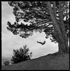 Bernal Swing by Erin Eli