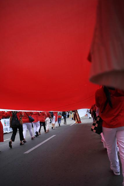 #1 Winner - Merah Putih Challenge - Ronald Yudiono - Pusaka Dwi Warna