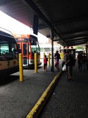Jamaica bus depot 2