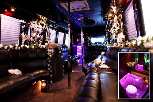 28 passenger Party Bus Rental