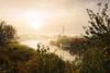 Dawn on a misty Norfolk Broads by Steven Docwra