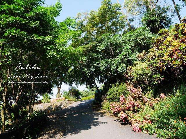 宜蘭一日遊旅遊景點仁山植物園 (11)