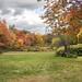 Boxborough back yard by Muffet