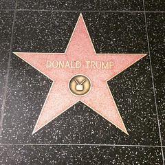 I feel that a star on the #Hollywood walk of fame is forever cheapened with @therealdonaldtrump having on. #racist #asshole