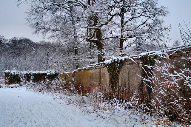 Winter in Den Treek