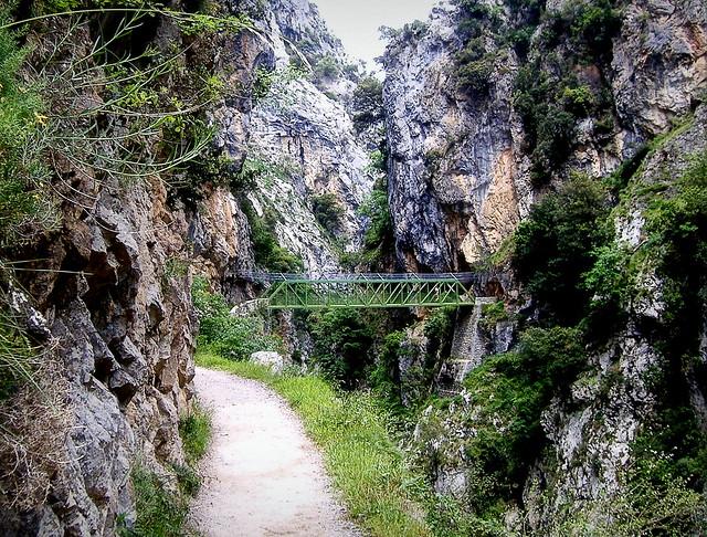 Puente sobre el río Cares