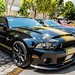 Shelby GT500 Super Snake 50th Anniversary Edition por SpottingMex