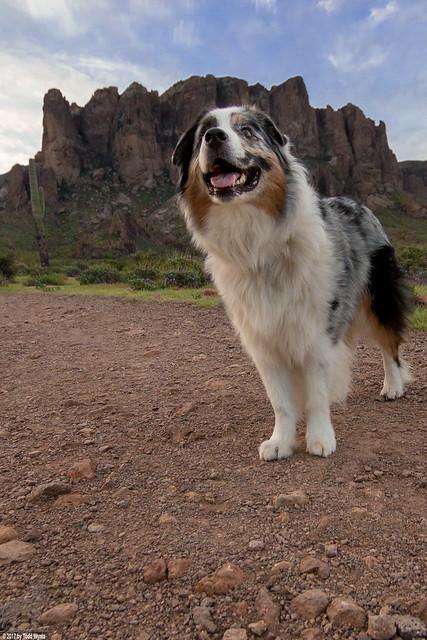 The happy hiker