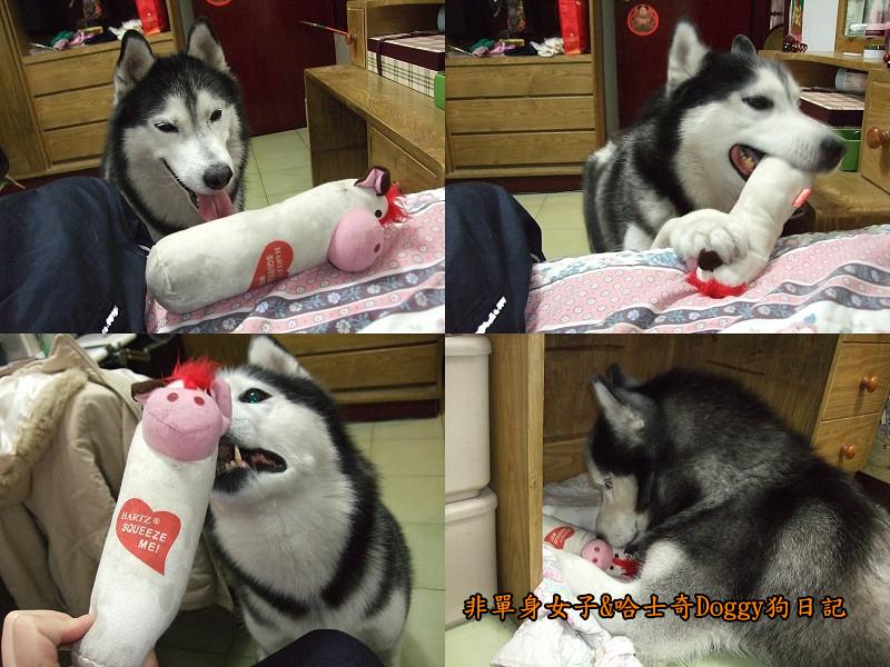 2012哈士奇doggy寵物玩具03