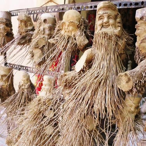 命を吹き込まれた竹の根っこたち。