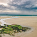 Rocks, seaweed and water, the beach of Saint Lunaire by Napafloma-Photographe