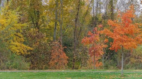 autumn usa connecticut cromwell originaljpeg johnjmurphyiii 06416 sonycybershotdsch90 riverportpark