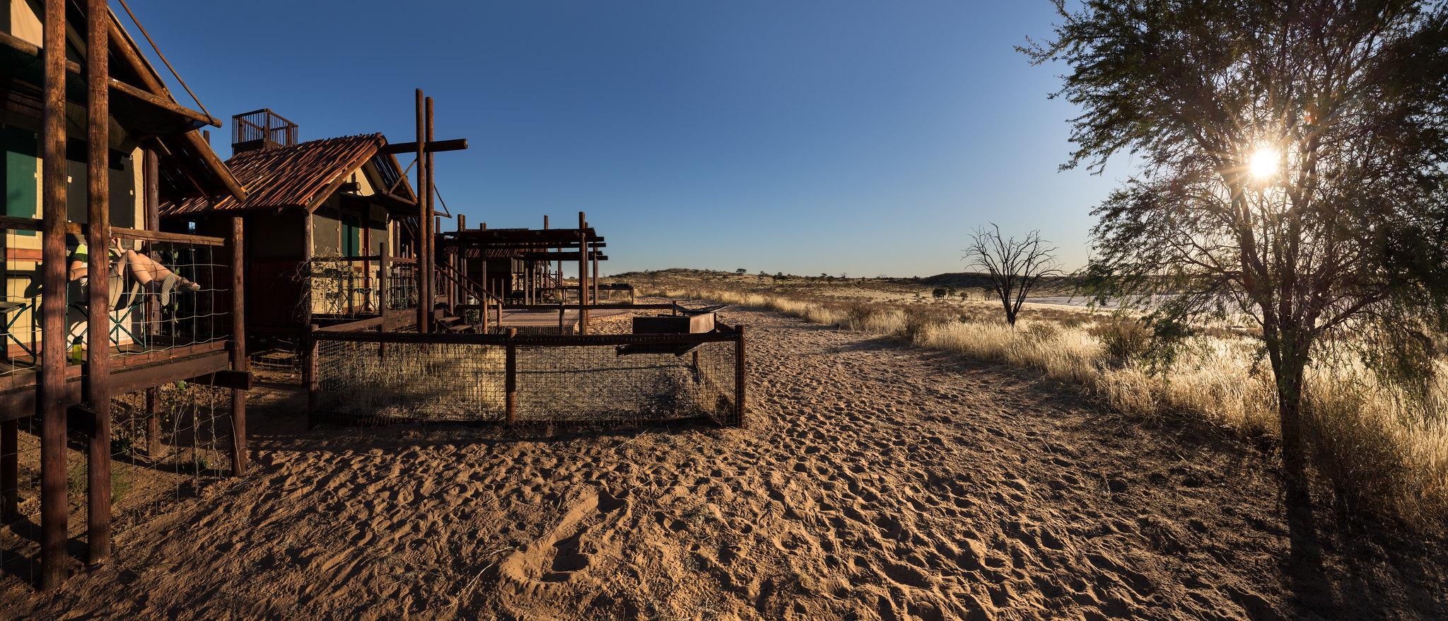 Abends in der Kalahari