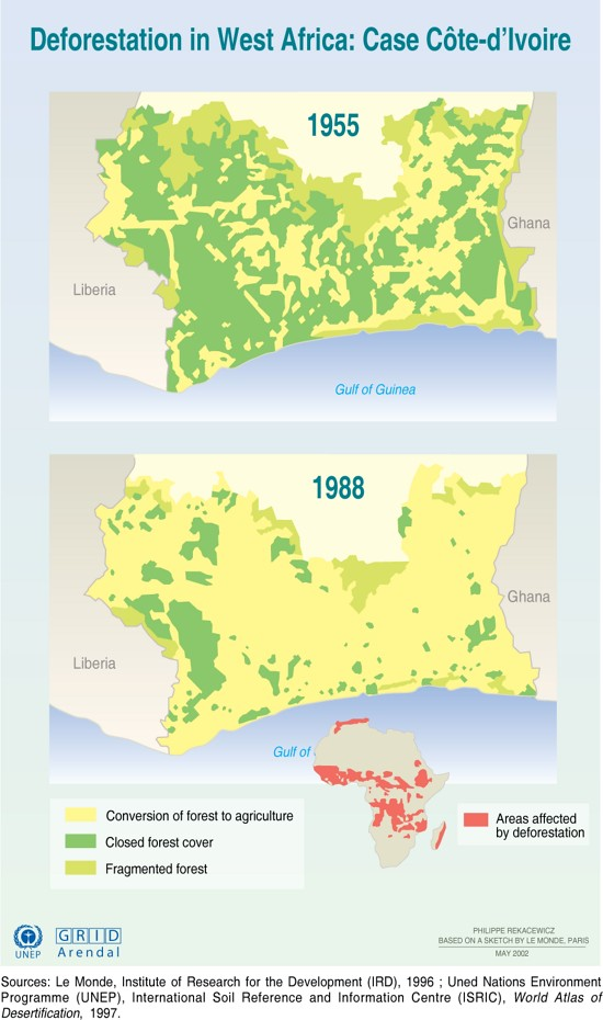 Image result for deforestation in côte d'ivoire images