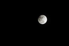 Lunar Exclipse -2