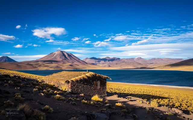 Laguna Miscanti, Desierto de Atacama