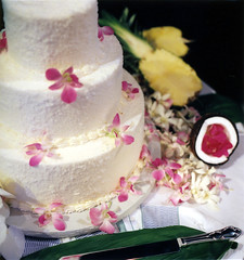 cake goodness