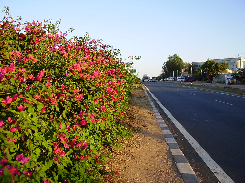 Hosur Road
