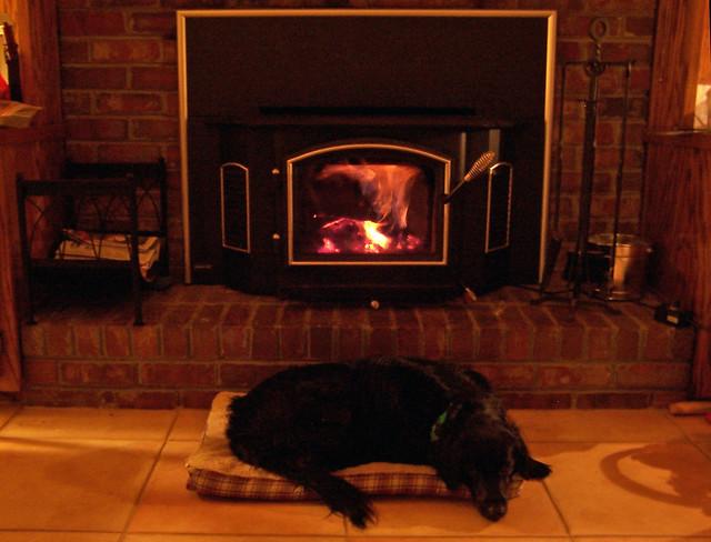 Wood stove dog