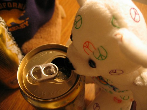 A close-up of a bear and beer