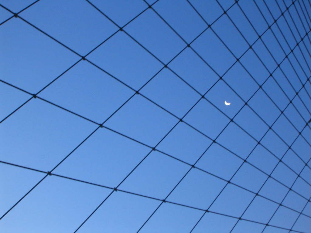 moonOverBrooklynBridge