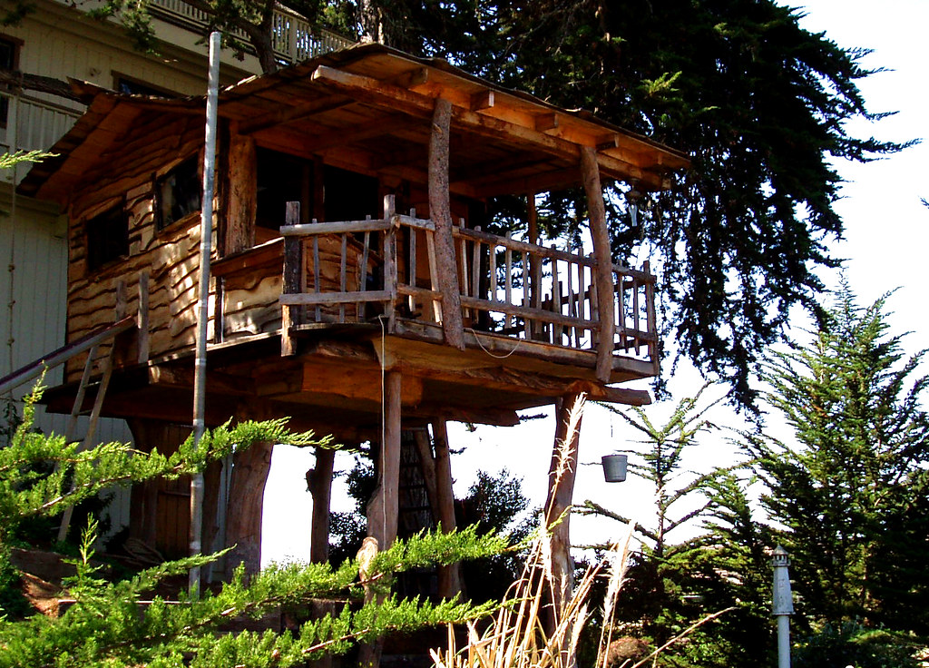 Building Treehouses & Cleaning Grout