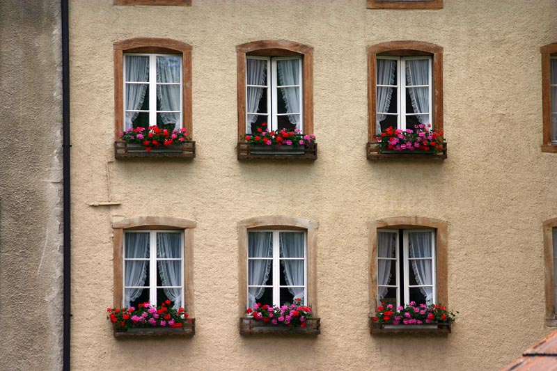 window shape