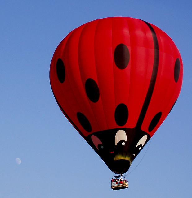 fantasy land ladybugs moons - photo #18