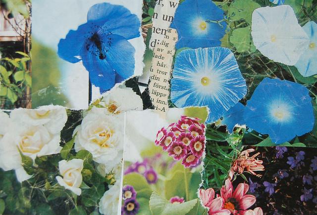 Blue postcard