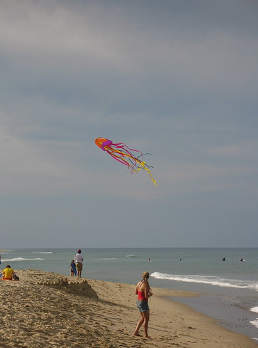 Kite on Marconi Beach