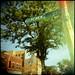 Gunsmoke Street by annabelletexter