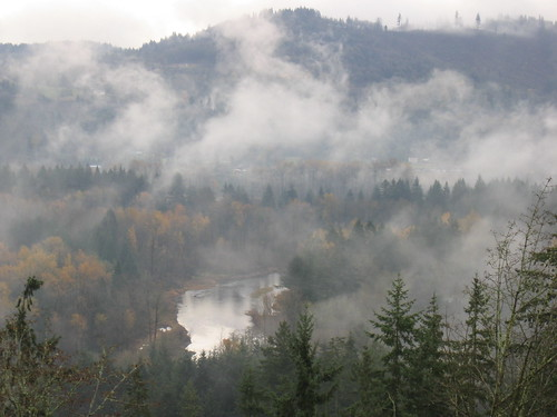 autumn fall leaves fog woodland river landscape geotagged island washington eagle lewis foliage lewisriver canons400 eagleisland
